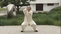 武当太极拳108式 2(单贵文)