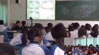 物理―八年級上冊―第五章電流和電路(串聯和并聯)―人教課標版―桂江民―沙溪鎮中學