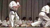 DanzanRyu柔术表演