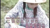 邓丽君:闽南_福建语名曲精选
