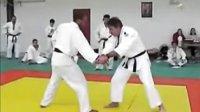 ◆柔术20技术