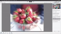 Adobe Photoshop Elements 12与Premiere Elements 12新功能简介