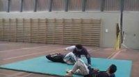 柔术WJJF技法表演曼奇尼比萨2008