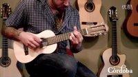Cordoba Guitars - Guilele 吉利利