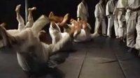 danzan刘某纽约柔术演示