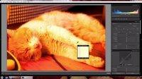Lightroom和Photoshop摄影后期教程03(白平衡)
