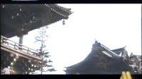 《寅次郎的故事》第8集 寅次郎恋歌(央视版)
