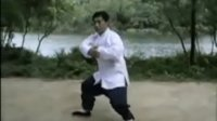 杨氏太极拳85式 第三式 揽雀尾