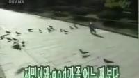 [god]育儿日记MV.by dn2212