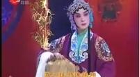 戏曲——2006年全国南北演艺明星大反串(上)