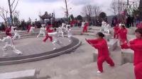 2014平昌县南天门森林运动公园开园仪式暨庆-三八-节太极拳展示