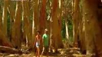 澳大利亚旅游胜地Brampton岛