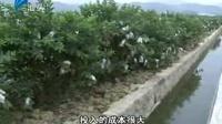 汕头新闻2014-03-19chaoshange.com