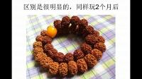金刚菩提子的赏玩与选购 品鉴(丽江自由行:Ljhappy.com)