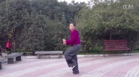 贞贞广场舞迈克尔杰克逊舞曲