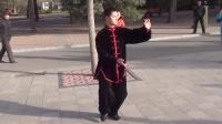 陈式太极拳老架一路------碧沙岗公园辅导站站长贺斌老师演练
