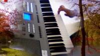 KB280电子琴弹唱曲【红豆红 】