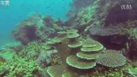 潜水爱好者天堂 菲律宾利纳帕坎岛