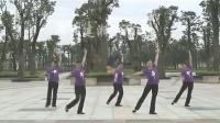 衡阳建湘广场舞  在那草地上