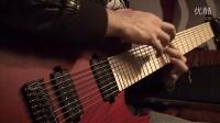 Seymour Duncan Pegasus _ Sentient 8-string set
