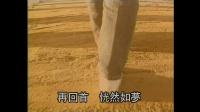 李翊君 再回首(H264高清)