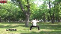 【武艺团】少林棍教学视频