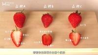 MOOC水果课:如何挑到好吃草莓