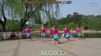 廊坊星月舞蹈队 游牧恋歌  表演版(习舞)