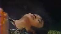 shenzhou1985.16
