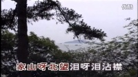 韩宝仪 - 天涯歌女(台湾金猪唱片版本)