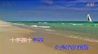 新编赞美诗_216_〈近主十架歌〉KTV_基督教
