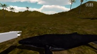 Whale Petting Simulator 2014 Game Review (HD)