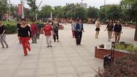 风中梅花abc广场舞系列:溜溜的情歌