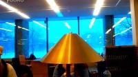 康奈尔大学图书馆