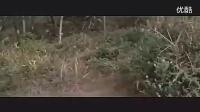 黄梅戏老电影——盘丝洞