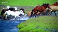 马儿过河精彩