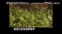 央视文化之旅寻找绿雪芽白茶(福鼎白茶白毫银针白牡丹寿眉)