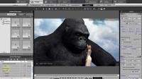 视频速报:iClone实战《金刚(King Kong)》!-www.nbitc.com,慧之家