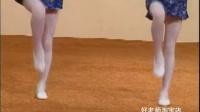 中国舞蹈考级教材北舞★儿童少儿舞蹈考教材1-13级13VCD