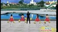 幼儿园健身操 幼儿园韵律操(5VCD光盘)