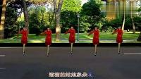 溜溜的姑娘像朵花-8步-dance-秋歌广场舞_标清
