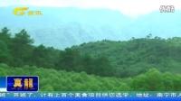 南宁:保护饮用水源地 禁止周围再种速生桉140625新闻在线_高清