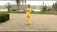 荷塘月色舞蹈正面,叶雯的舞蹈,广场舞_标清