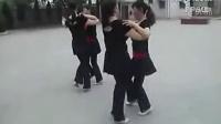 广场舞双人舞十四步舞蹈视频