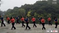 张春丽广场舞《醉乡》编舞:廖弟