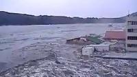 这洪水真TM猛,车子房子就像木头一样被冲着跑