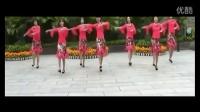 2014最新广场舞 《张灯结彩》 广场舞教学