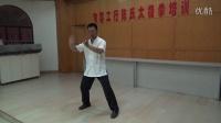 郭鑫陈氏太极拳第五、六式 单鞭 第二金刚(工行)