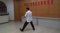 郭鑫陈氏太极拳 第七、八式 白鹤晾翅 斜行(工行)