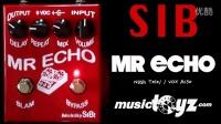 SIB Mr Echo Delay Guitar Pedal